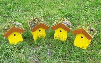 Ferien(s)pass bei der Firma Appert Holzbau AG